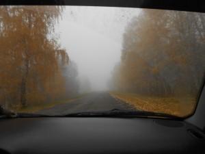Туман,Дорога в Бузулукский бор,2012