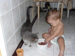 Мой внук Роберт и Путя обедают)))