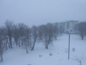 Моя зима