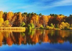 Красавица - осень